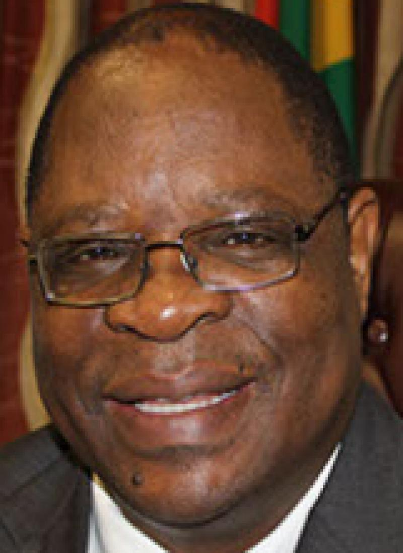 Deputy Chief Justice Ray Zondo